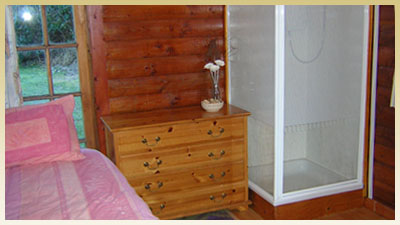 Bed, chest of drawers and shower